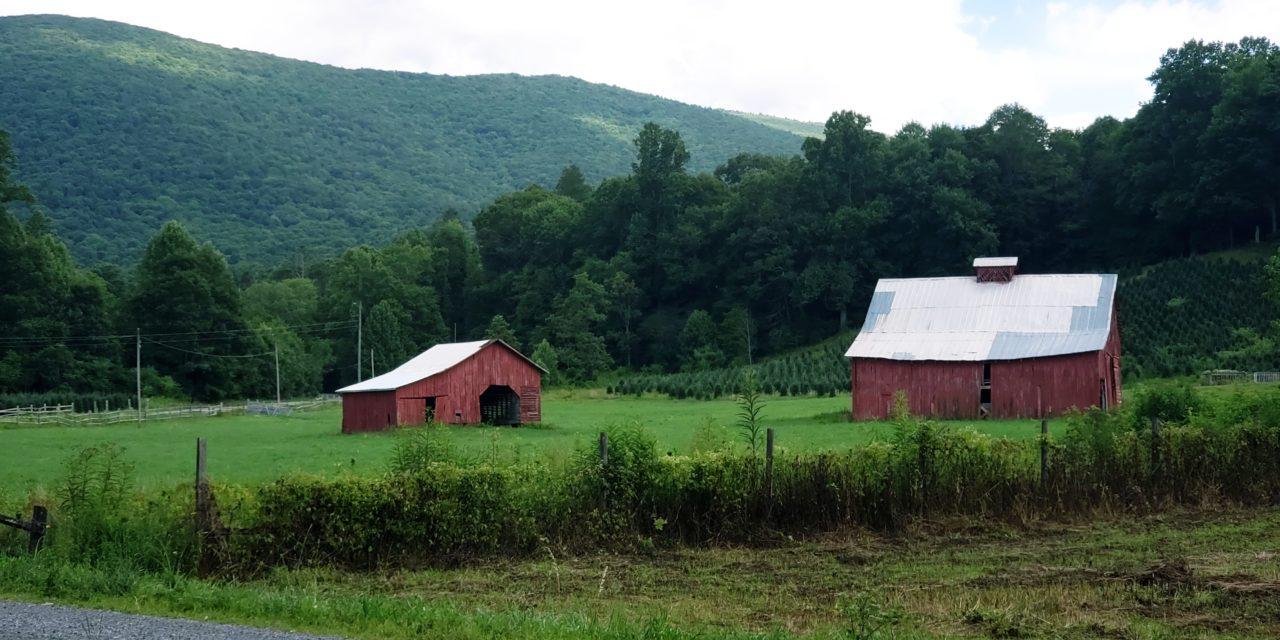 Socially Distancing in Historic Abingdon, Virginia